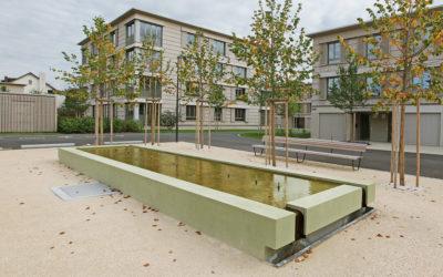 Gestaltungselemente für Überbauung Neugrün, Mellingen AG